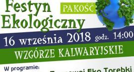 Festyn Ekologiczny w Pakości