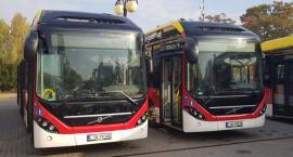 Nowe autobusy dotarły do miasta