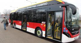 Nowe autobusy wyjechały na ulice