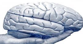 Tajemnice ludzkiego mózgu - możliwości, wyzwania, terapia
