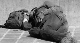 W sukurs bezdomnym