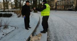 Strażnicy rozdają psie pakiety