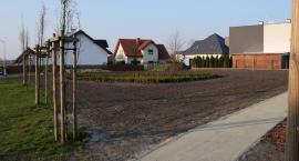 Nowe tereny zielone na osiedlu Solno