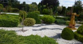 Szukamy najładniejszych ogródków i balkonów w Inowrocławiu