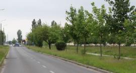 Ponad 100 nowych miejsc parkingowych na Rąbinie