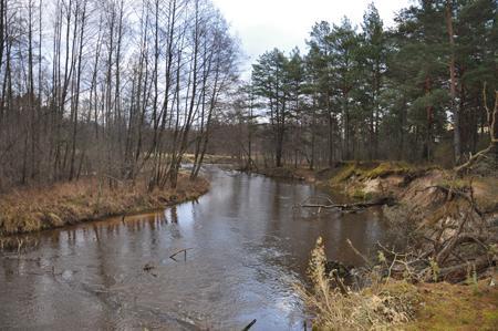 Rzeka, Szkwa kurpiowskie klimaty - zdjęcie, fotografia