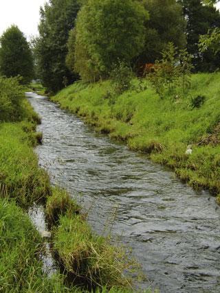 Rzeka, drugiej stronie Łużyckiej - zdjęcie, fotografia