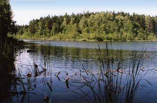 Jezioro, Łańcuch jezior między Piduniem Rekownicą - zdjęcie, fotografia