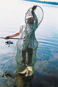 , Cofka Zbiornika Goczałkowickiego Eldorado - zdjęcie, fotografia