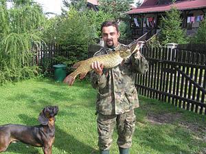 Felietony wędkarskie, Szczupak urlopie - zdjęcie, fotografia