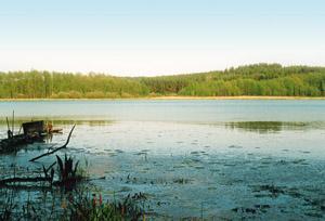 Jezioro, Jezioro Krzyżewsko - zdjęcie, fotografia