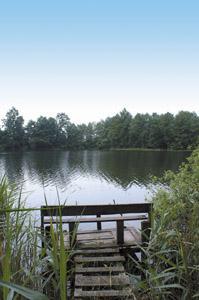 Jezioro, Piękny zakątek Jezioro Długie - zdjęcie, fotografia