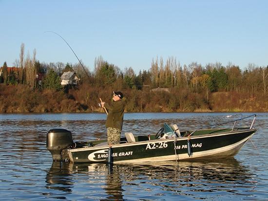 Jak łowić ryby - techniki , Sandacze koryta - zdjęcie, fotografia