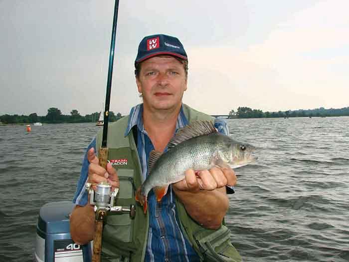 Jak łowić ryby - techniki , Okoniowy rynek - zdjęcie, fotografia