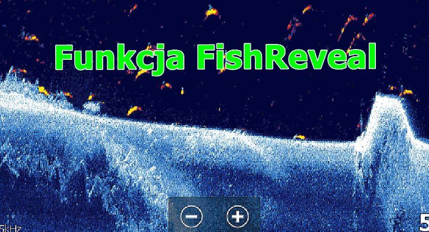 Elektronika - Gadżety , Funkcja FishReveal echosondzie - zdjęcie, fotografia