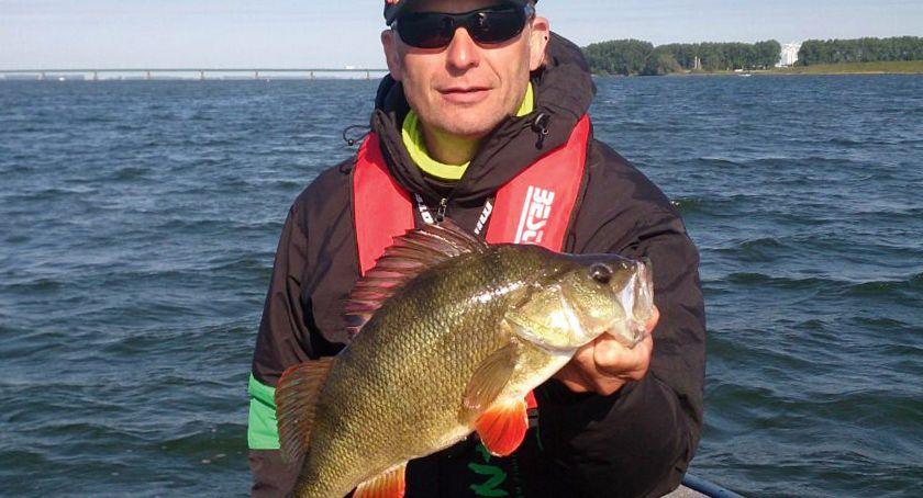 Jak łowić ryby - techniki , dużego okonia - zdjęcie, fotografia