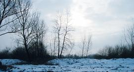 Jezioro Moczydło (Jeziórko) w Karczewie