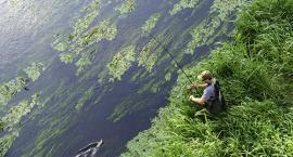 Rzeka Wkra