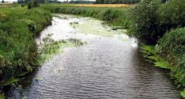 Tyśmienica - tajemnicza rzeka