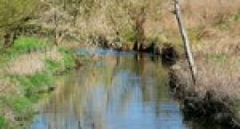 Rzeka Ełk koło Stradun