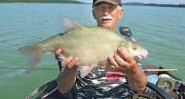 Letnie łowiska leszczy w jeziorze