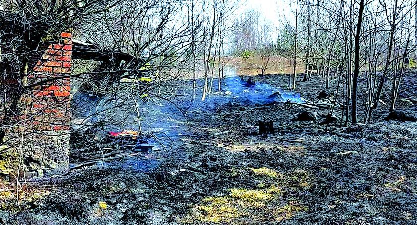 pożary, Płoną trawy! - zdjęcie, fotografia