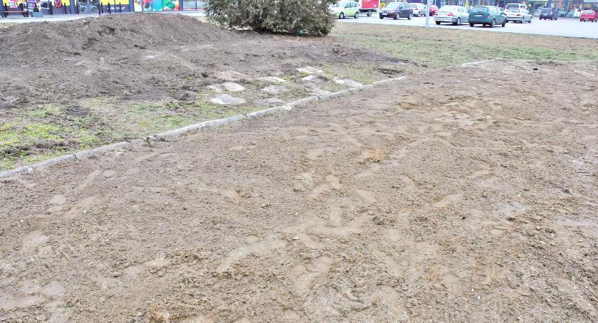 śledcze, Śledztwo sprawie Lapidarium umorzone - zdjęcie, fotografia