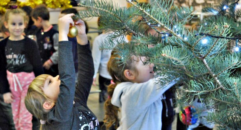 imprezy przedszkolne, Przedszkolaki udekorowały ratuszową choinkę - zdjęcie, fotografia