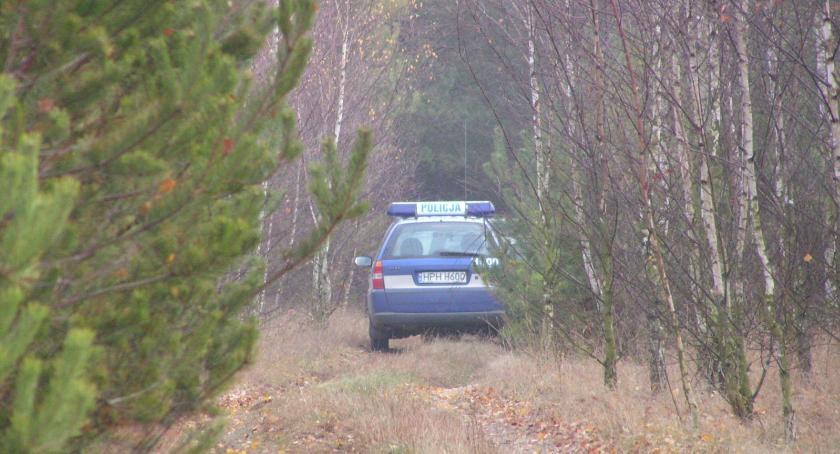 śledcze, lesie narkotykami - zdjęcie, fotografia