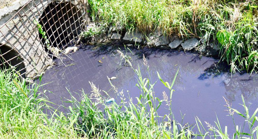 ekologia, Ekologiczne zagrożenie oczyszczą kanał Piaski - zdjęcie, fotografia