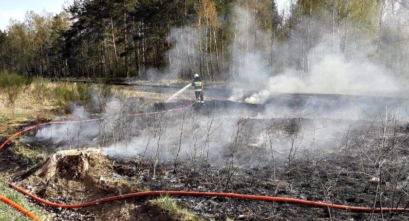 straż w akcji, Strażackie pigułce nadal sucho pożarowo groźnie - zdjęcie, fotografia