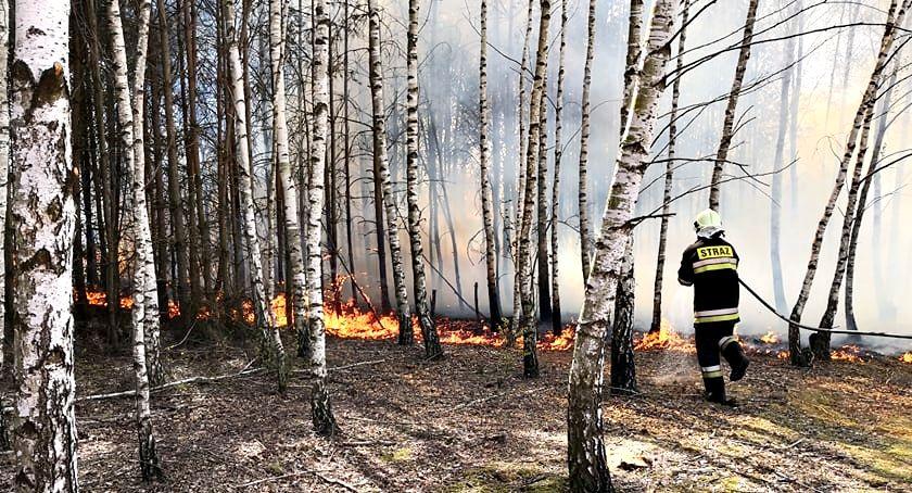 pożary, Niezwykle groźny pożarowy wtorek - zdjęcie, fotografia