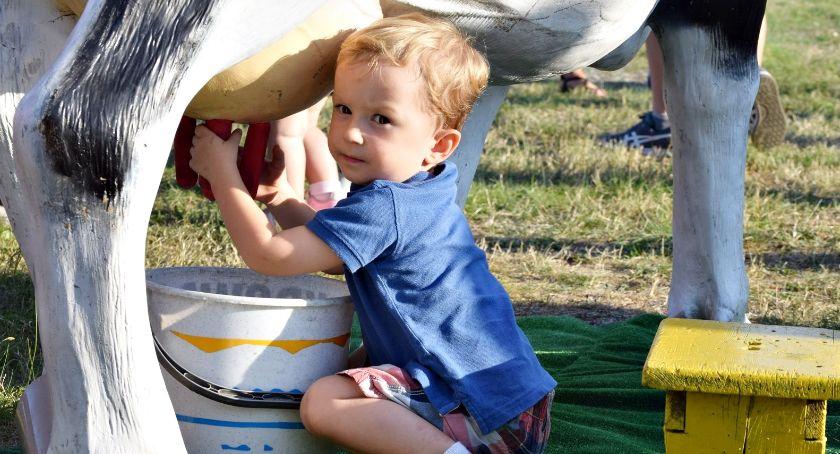 festyny/pikniki, Dojenie rodeo kilka koncertów czyli rodzinny festyn gminy Naruszewo - zdjęcie, fotografia