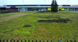 Już w sprzedaży nowy Płońszczak i hitowe info: Jest prokuratorskie śledztwo w sprawie Lapidarium!