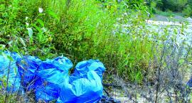 Pomóż posprzątać zalew