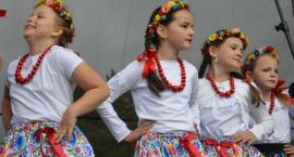 Truskawkowy festiwal w Karolinowie