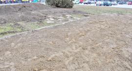 Śledztwo w sprawie Lapidarium umorzone