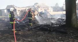 Pożary i drzewa, czyli strażackie dni w pigułce