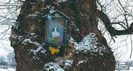 Płońszczak NA DOBRY DZIEŃ - 24.02.2019