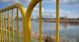 O żółtym potworze na Rutkach