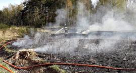 Strażackie dni w pigułce - nadal sucho i pożarowo groźnie