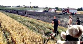 Strażackie dni w pigułce - groźnie na polach
