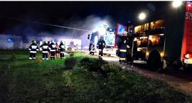 Strażackie dni w pigułce - w pożarze w Brześciu zginęło sześć psów