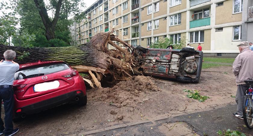 bezpieczeństwo, Przygniecione samochody Żoliborzu Ogromne szkody nawałnicy Warszawie - zdjęcie, fotografia