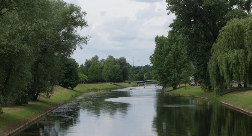 zieleń, Miasto zabrać skwery parki - zdjęcie, fotografia