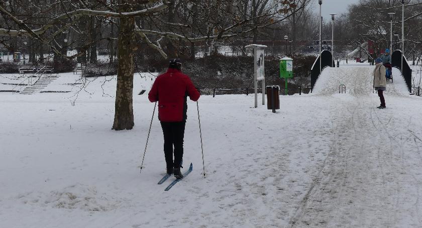 rekreacja, Kępa Potocka dobre miejsce zimowy spacer - zdjęcie, fotografia