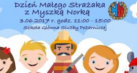 Dzień Małego Strażaka - impreza plenerowa dla dzieci