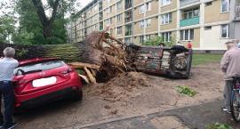 Przygniecione samochody na Żoliborzu. Ogromne szkody po nawałnicy w Warszawie.
