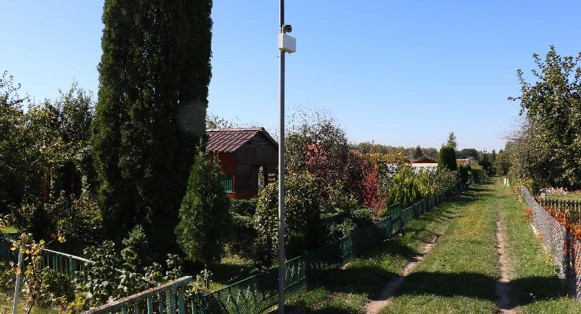 inwestycje, Przyznano dotacje inwestycje ogrodów działkowych - zdjęcie, fotografia