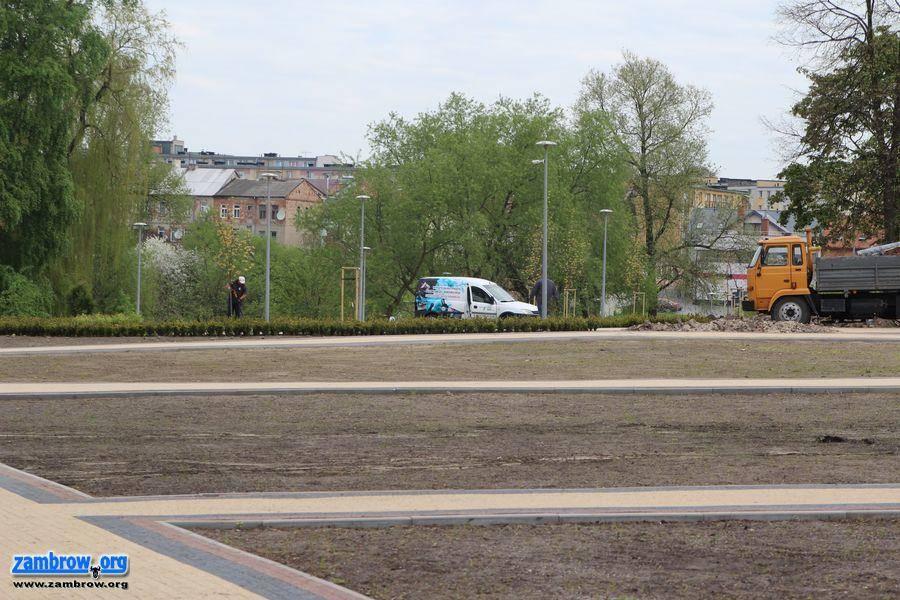 inwestycje, Przybywa zieleni nowym parku [foto+video] - zdjęcie, fotografia